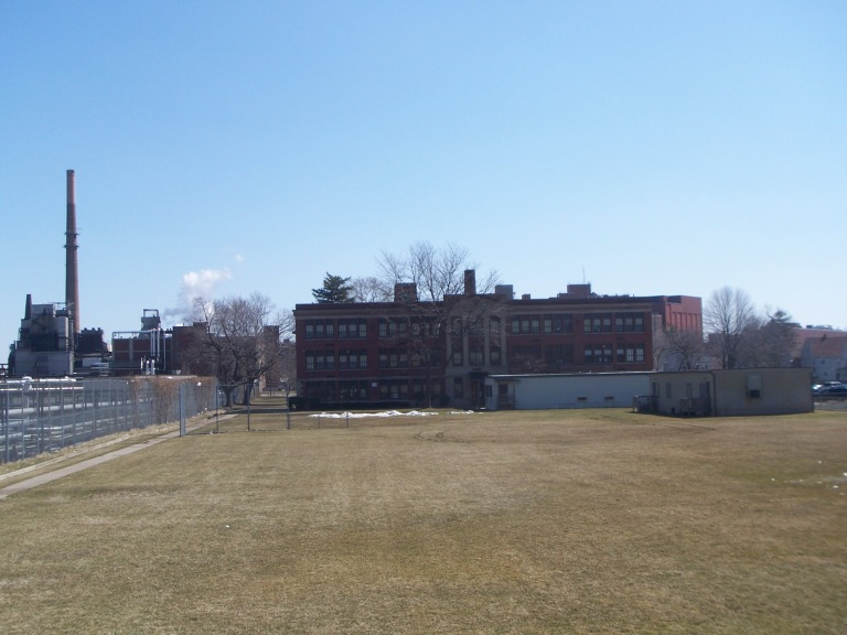 My elementary school, Kodak park school 41